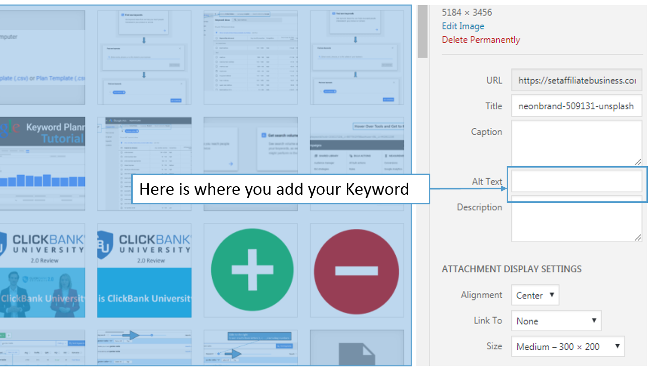 how to find the rank of a website