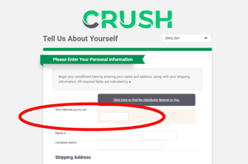 Is Crush Global a Scam