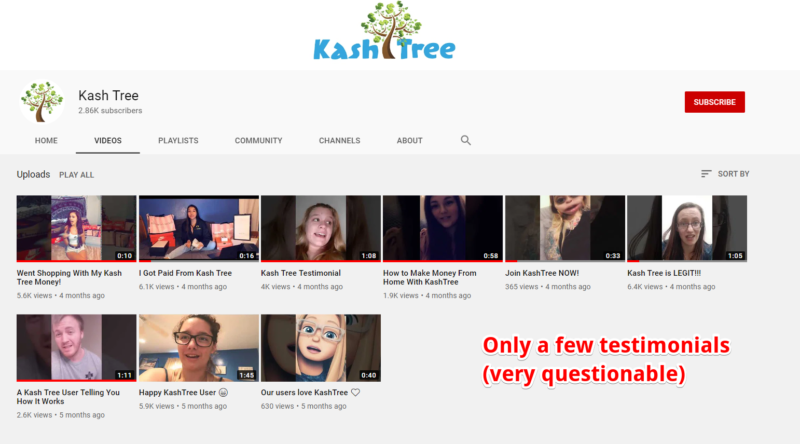 Is Kash Tree a Scam