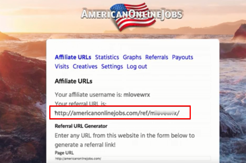 AOJ Work From Home Job Review
