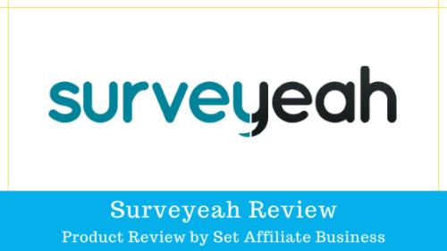Surveyeah Review