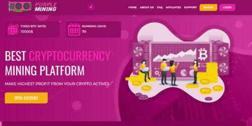 Purple Mining Review