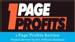 1 Page Profits Review